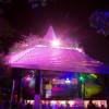 Tobago Nightlife & Entertainment