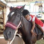 Healing with horses 3