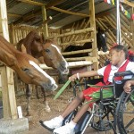 Healing with horses 5