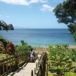 Macqueripe Bay, Trinidad. Photo: Bridget van Dongen