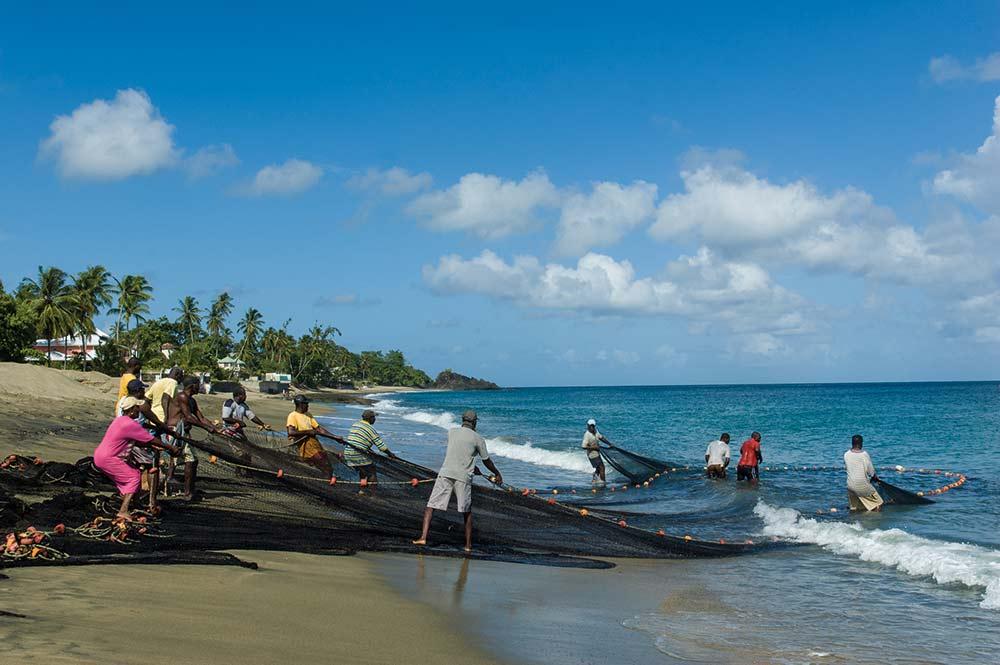 Pulling seine (Trinidad & Tobago). Photo: Martin Farinha