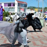 A bat masquerades at the Scarborough Esplanade. Photographer: Onika Henry