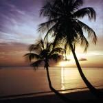 Tobago at dusk. Photographer: Sean Drakes/Blue Mango