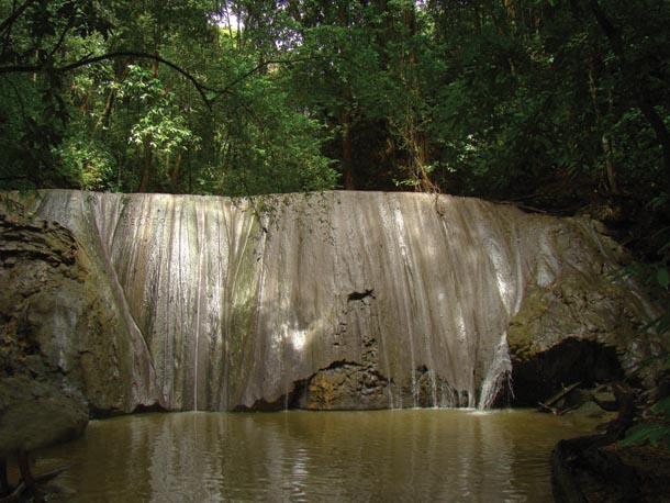 Turure Falls at Cumaca in the Northern Range. Photographer: Edison Boodoosingh