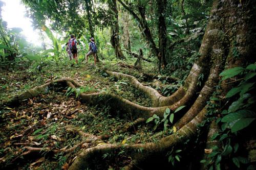 Hikers climb Mount Tamana in Central Trinidad. Photographer: Stephen Broadbridge
