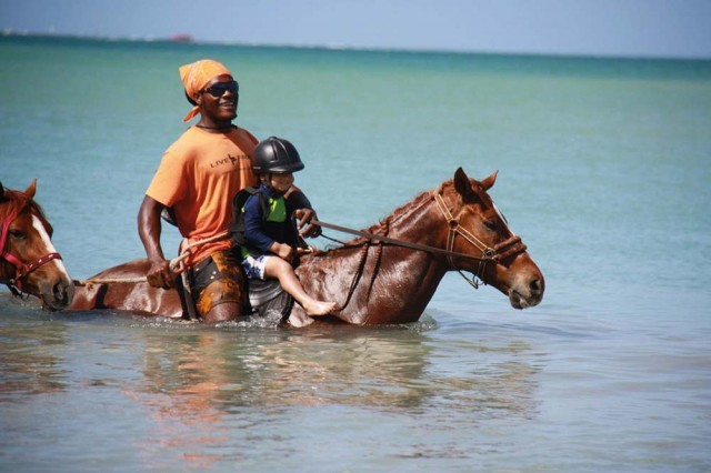 Healing and Being With Horses (Tobago)