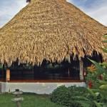 An ajoupa at Kariwak Village, Tobago