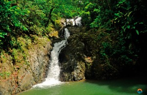 Argyle Waterfall. Courtesy The Division of Tourism and Transportation