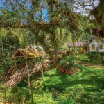 Trinidad Sightseeing Day Trips