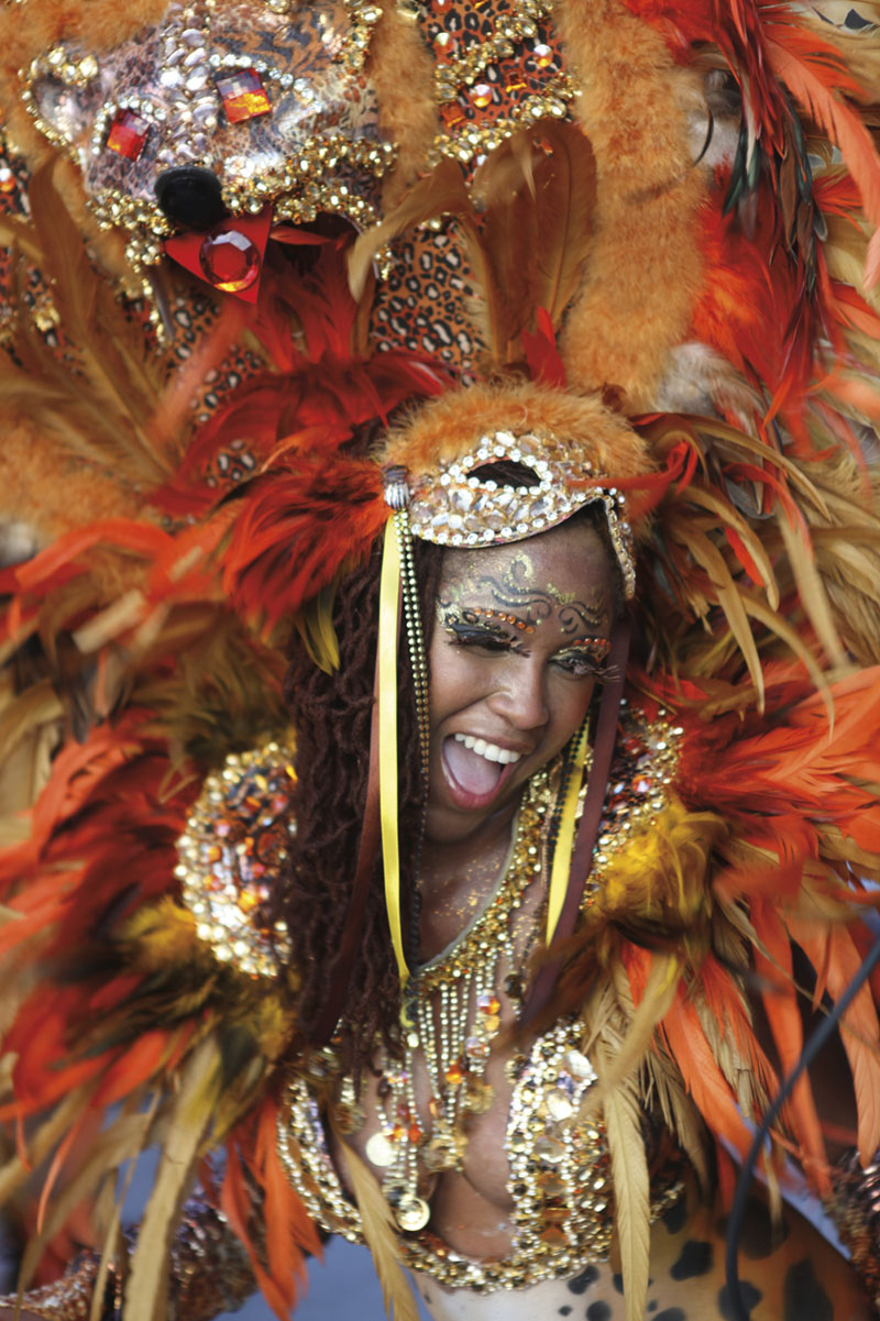 Masquerader. Photo by Stephen Broadbridge