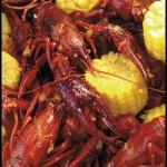 Uncle Tony's Crawfish Boil. Photo by Sarita Rampersad