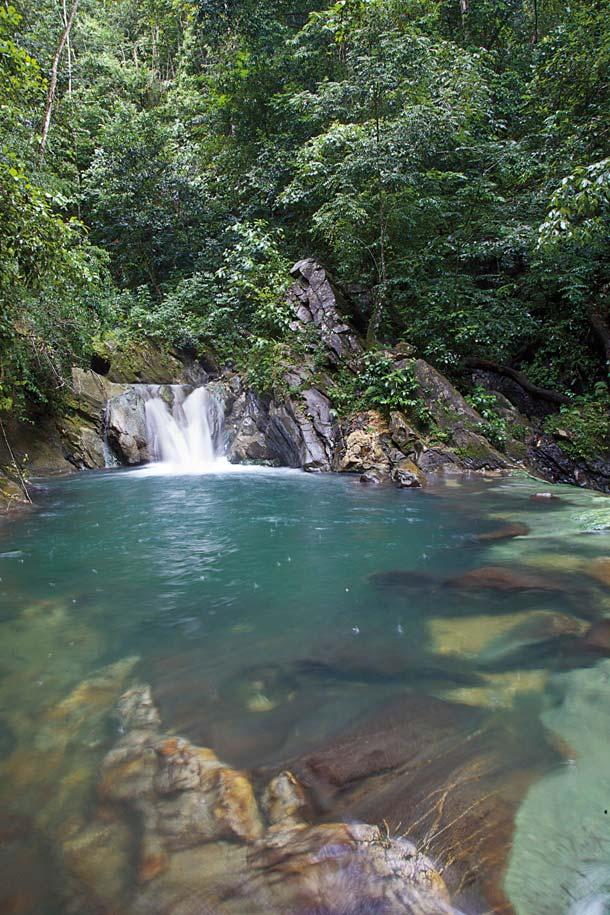Aripo waterfall. Photo by Ariann Thompson/MEP PublishersTrinidad. Photo by Ariann Thompson