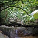 Edith Falls hike. Photo by Ariann Thompson/MEP Publishers