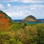 The north coast of Tobago. Photo by Stephen Broadbridge
