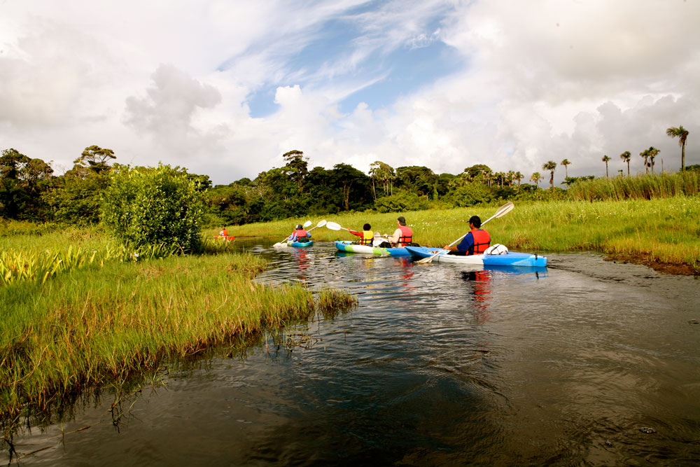 Kayaking in Nariva swamp. Photo by Stephen Broadbridge