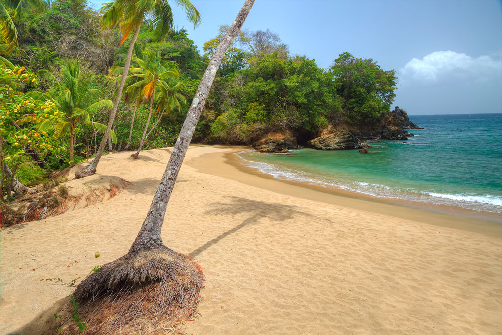 Englishman's Bay, Tobago. Photo by Chris Anderson