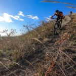 A steep and fast descent. Photo: Daniel Knecht, instagram.com/2radwanderer. Courtesy Tobago Mountain Bike Tours